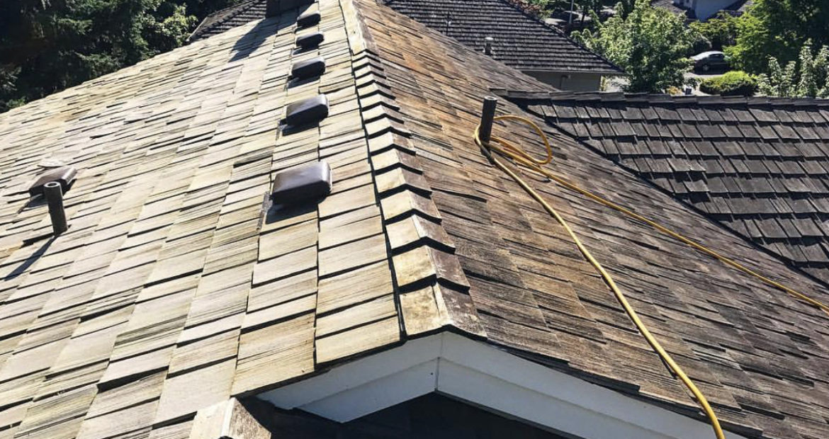 Roof Moss Removal Near Me In Seattle