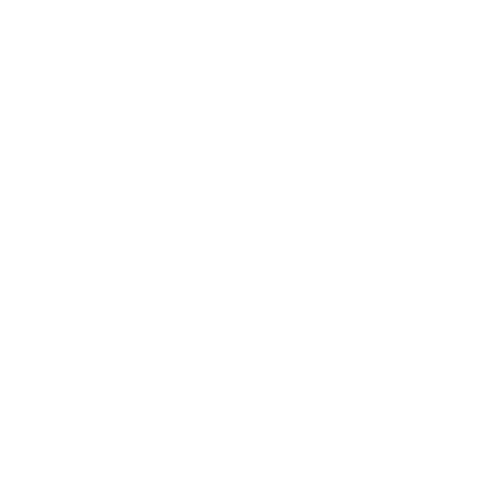 NW Shine Light White Logo 2